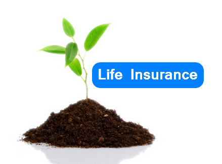 Life Insurance Compare Life Insurance Policies